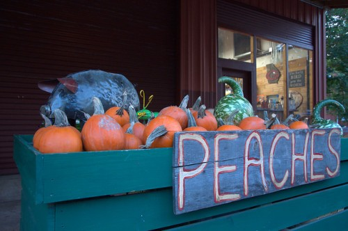 Ripe Thing Market Local Produce Greensboro GA Organic Foods Pumpkins Photograph Copyright Brian Brown Vanishing North Georgia USA 2015