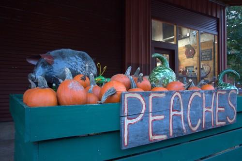Ripe Thing Market Local Produce Greensboro GA Organic Foods Pumpkins Photograph Copyright Brian Brown Vanishing North Georgia USA 2015