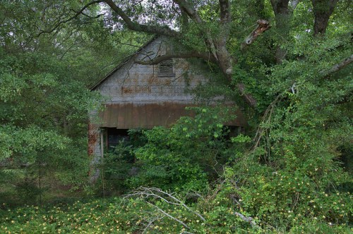 Vanna GA Hart County Abandoned Country Store Photograph Copyright Brian Brown Vanishing North Georgia USA 2015