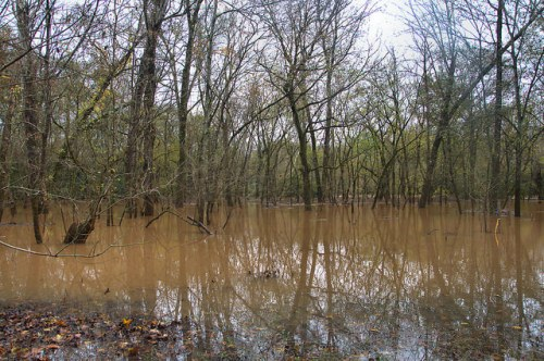 Flooding on the Oconee River at Scull Shoals Greene County GA Photograph Copyright Brian Brown Vanishing North Georgia USA 2015
