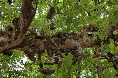 Mountain Crossings Appalachian Trail Blood Mountain Walasi YI Shoe Tree Photograph Copyright Brian Brown Vanishing North Georgia USA 2015