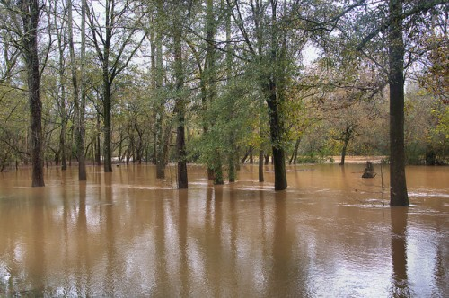 Oconee River Flooding at Scull Shoals Historic Site Greene County GA Photograph Copyright Brian Brown Vanishing North Georgia USA 2015