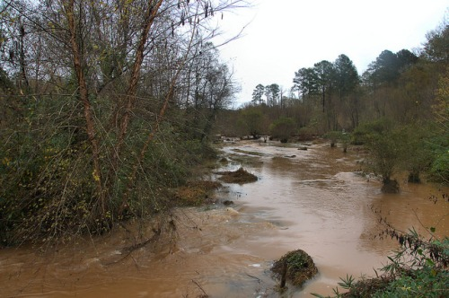Oconee River Flooding Sandy Creek Near Scull Shoals Greene County GA Photograph Copyright Brian Brown Vanishing North Georgia USA 2015