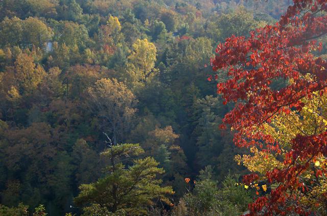 tallulah-gorge-ga-fall-color-photograph-copyright-brian-brown-vanishing-north-georgia-usa-2016