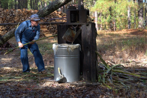 ribbon-cane-syrup-master-grinding-junction-city-ga-photograph-copyright-brian-brown-vanishing-north-georgia-usa-2017