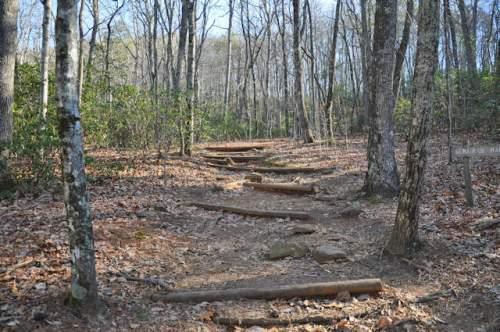 applachian-trail-approach-amicalola-falls-ga-photograph-copyright-brian-brown-vanishing-north-georgia-usa-2017