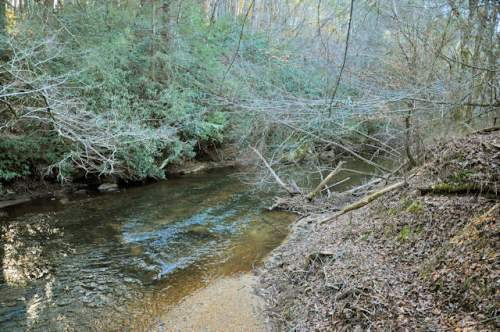 etowah-river-lumpkin-county-ga-photograph-copyright-brian-brown-vanishing-north-georgia-usa-2017